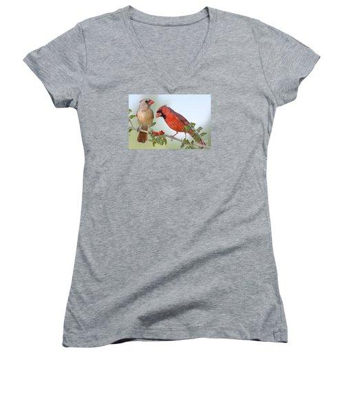 Beauty On A Branch Women's V-Neck T-Shirt