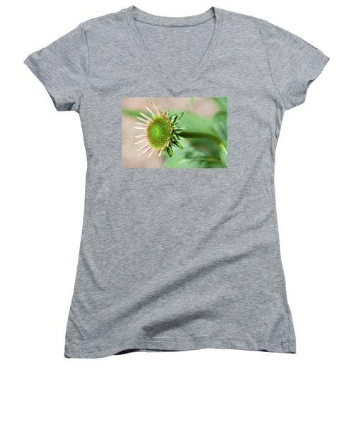 Becoming Echinacea - Women's V-Neck T-Shirt