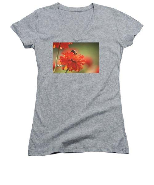 Bee And Flower Iv Women's V-Neck T-Shirt