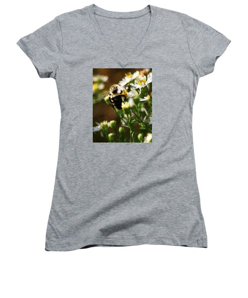 Bee And Spotted Cucumber Beetle On Aster Women's V-Neck T-Shirt