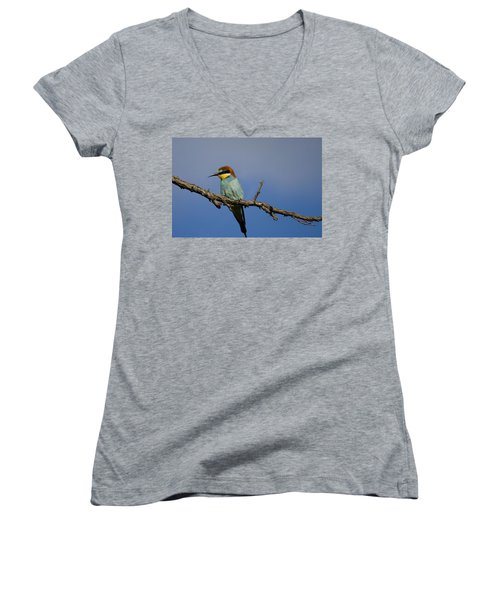 Bee Eater  Women's V-Neck
