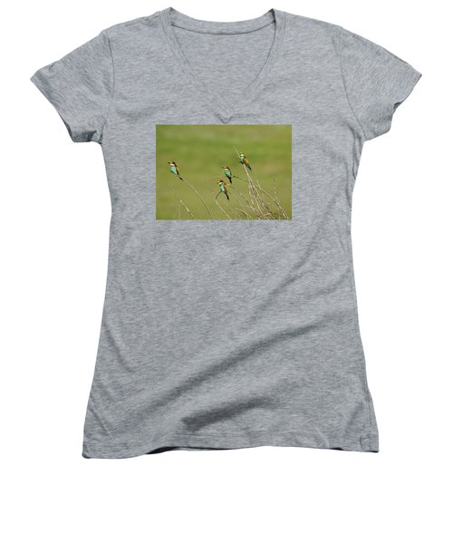 Bee Eaters  Women's V-Neck