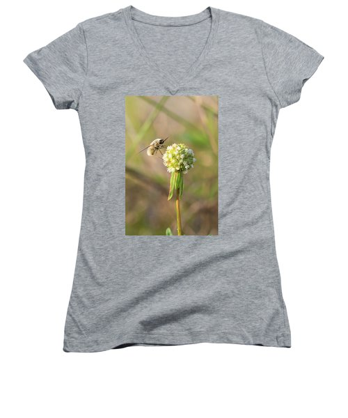 Bee Fly On A Wildflower Women's V-Neck T-Shirt (Junior Cut) by Christopher L Thomley