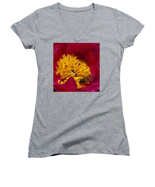 Bee On A Burgundy And Yellow Flower2 Women's V-Neck T-Shirt