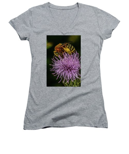 Women's V-Neck T-Shirt (Junior Cut) featuring the photograph Bee On A Thistle by Paul Freidlund