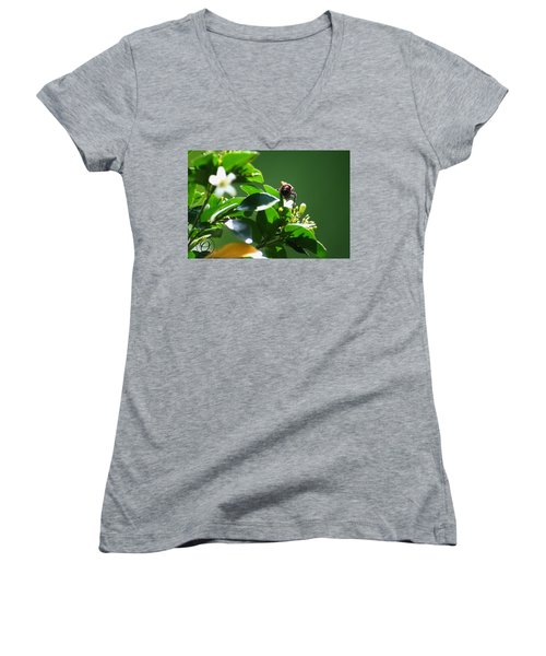 Bee On Jasmine Women's V-Neck T-Shirt (Junior Cut) by Shelley Overton