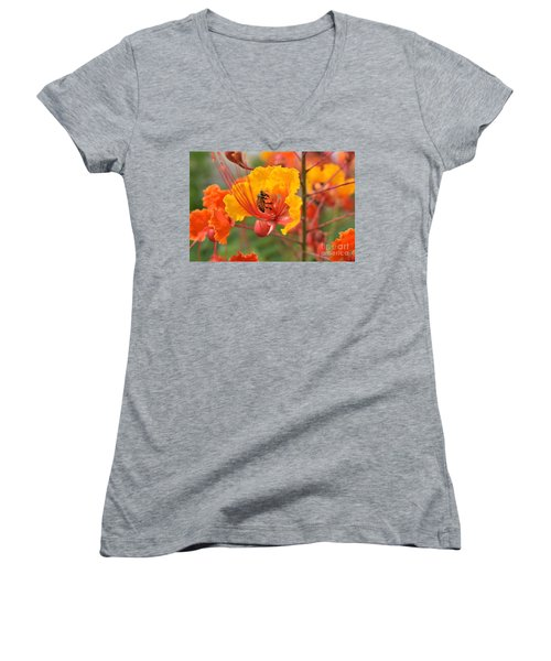 Bee Pollinating Bird Of Paradise Women's V-Neck