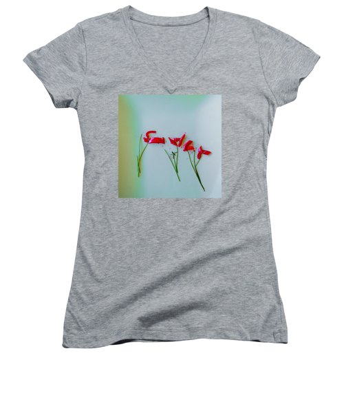 Beet The Blues Women's V-Neck T-Shirt