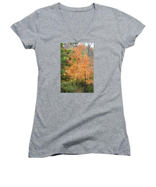 Before The Fall Women's V-Neck T-Shirt (Junior Cut) by Deborah  Crew-Johnson