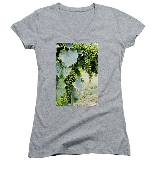 Before The Harvest Women's V-Neck (Athletic Fit)
