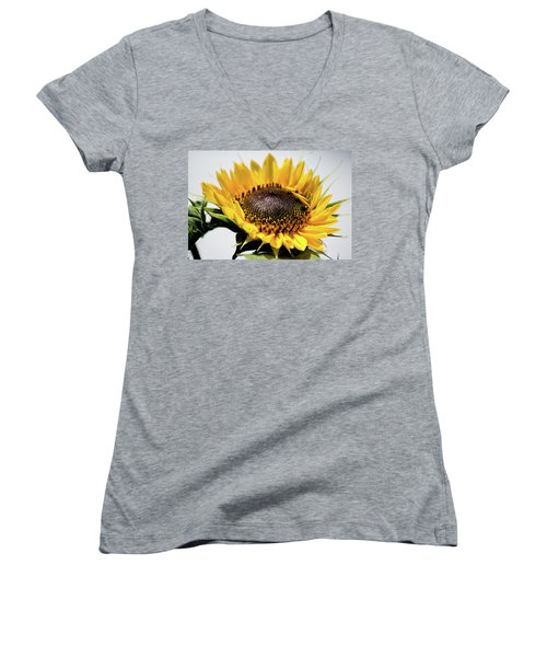 Beginning To Bloom Women's V-Neck (Athletic Fit)