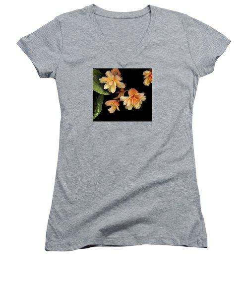 Begonias 2 Women's V-Neck T-Shirt (Junior Cut) by Janis Nussbaum Senungetuk