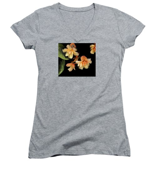Begonias 2 Women's V-Neck