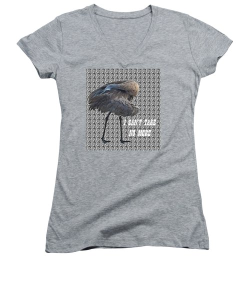 Behind The Feathers Women's V-Neck T-Shirt