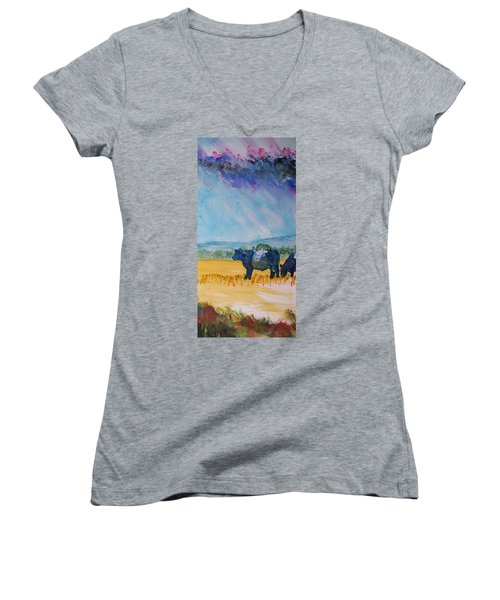 Belted Galloway Cows Narrow Painting Women's V-Neck
