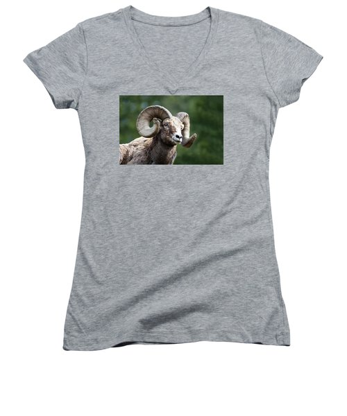 Women's V-Neck featuring the photograph Big Horn Sheep by Scott Read