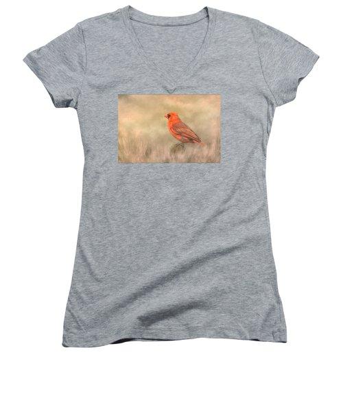Big Red Women's V-Neck T-Shirt