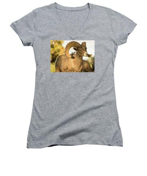 Bighorn Ram Women's V-Neck T-Shirt (Junior Cut) by Scott Warner