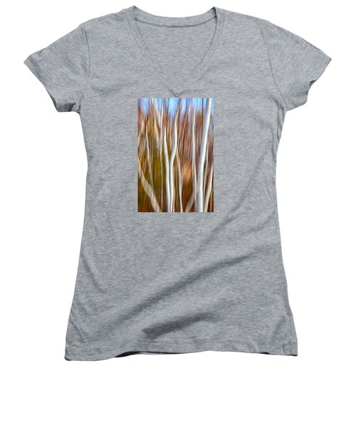 Birch Abstract No. 5 Women's V-Neck T-Shirt