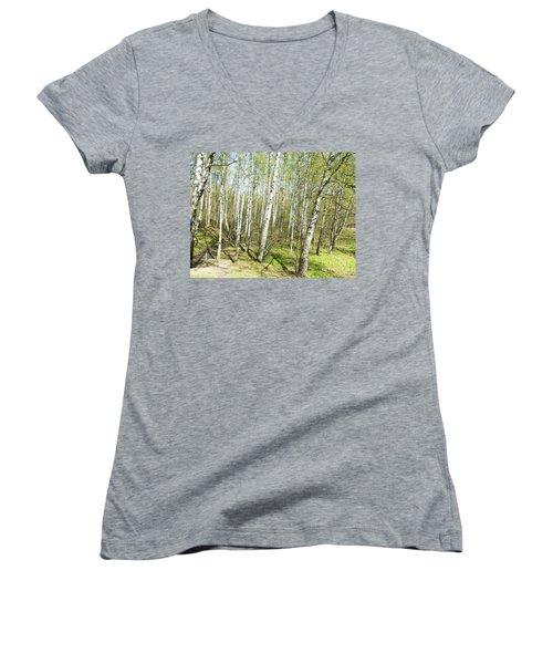 Birch Forest In Spring Women's V-Neck T-Shirt (Junior Cut) by Irina Afonskaya