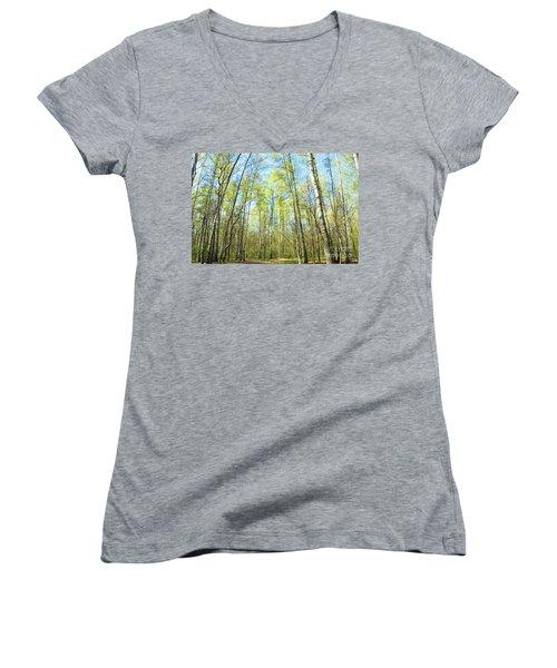 Birch Forest Spring Women's V-Neck T-Shirt (Junior Cut) by Irina Afonskaya