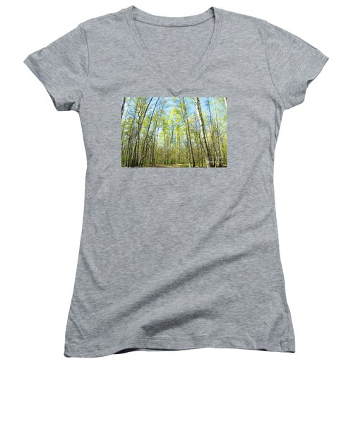 Birch Forest Spring Women's V-Neck (Athletic Fit)