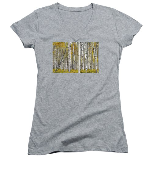 Birch Tree Grove With A Touch Of Yellow Color Women's V-Neck T-Shirt