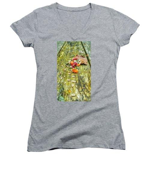 Bird Food Women's V-Neck T-Shirt (Junior Cut) by Isabella F Abbie Shores FRSA