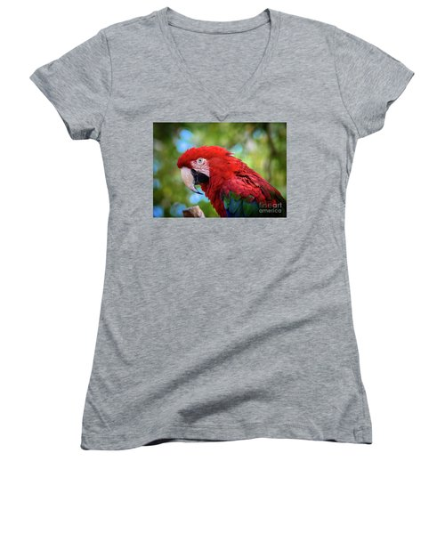 Women's V-Neck T-Shirt (Junior Cut) featuring the photograph Bird In Red by Lisa L Silva