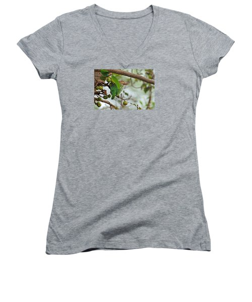 Women's V-Neck T-Shirt (Junior Cut) featuring the photograph Bird In The Bush by Pravine Chester