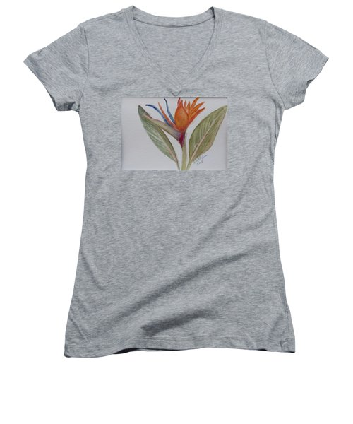 Women's V-Neck T-Shirt (Junior Cut) featuring the painting Bird Of Paradise by Donna Walsh