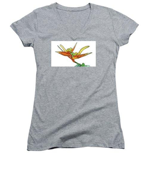 Bird Of Paradise Women's V-Neck T-Shirt (Junior Cut) by Jamie Downs