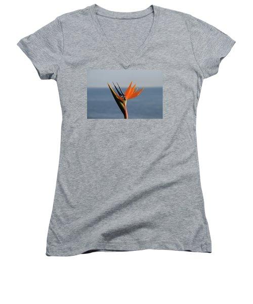 Bird Of Paradise Women's V-Neck T-Shirt