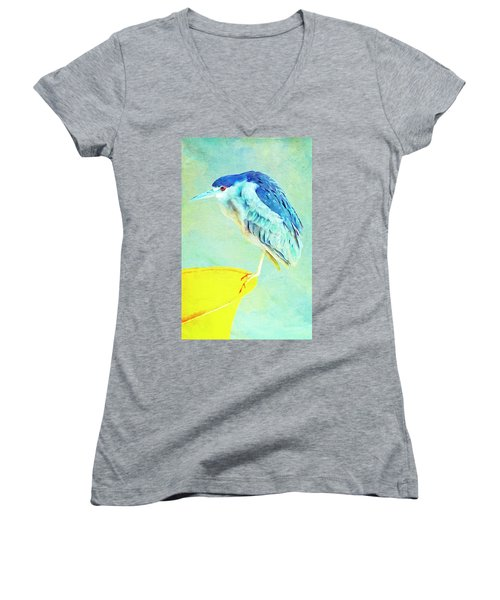 Bird On A Chair Women's V-Neck
