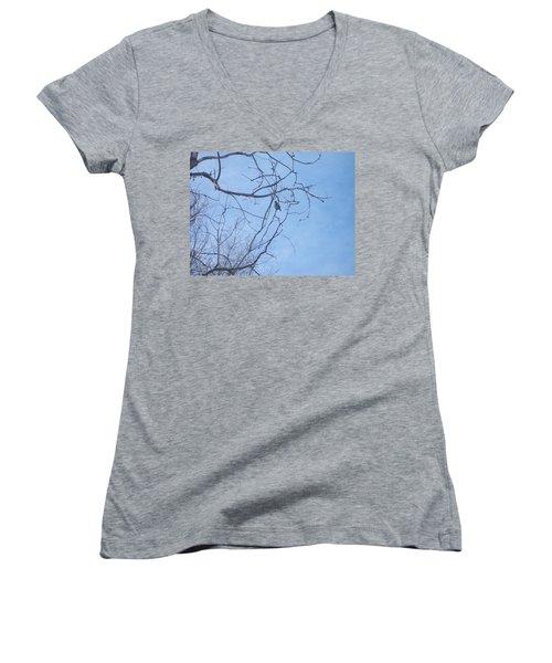 Women's V-Neck T-Shirt (Junior Cut) featuring the photograph Bird On A Limb by Jewel Hengen