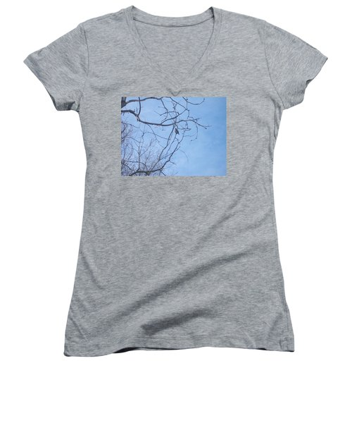 Bird On A Limb Women's V-Neck T-Shirt