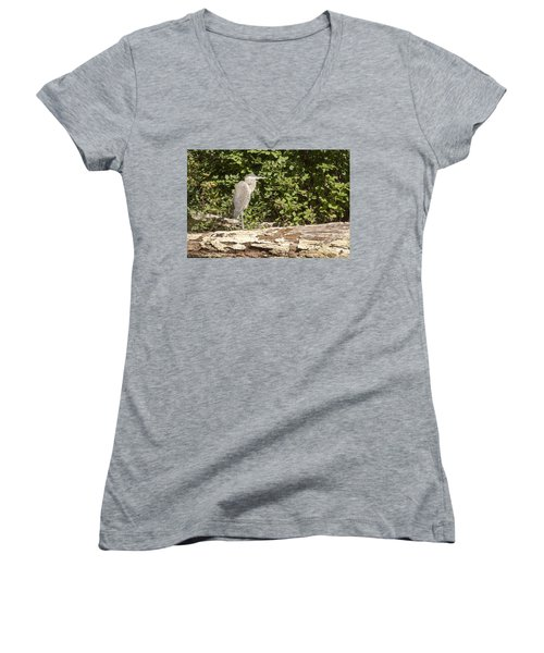 Bird On A Log Women's V-Neck T-Shirt