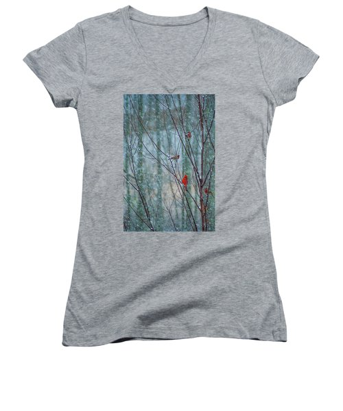 Birds On A Snowy Day Women's V-Neck (Athletic Fit)