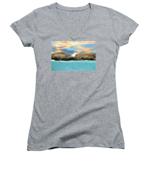 Birds On Ocean Rocks Women's V-Neck (Athletic Fit)