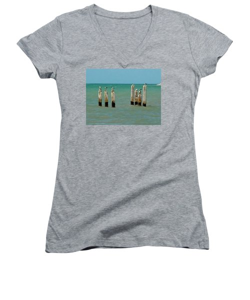 Birds On Sticks Women's V-Neck T-Shirt (Junior Cut) by David  Van Hulst