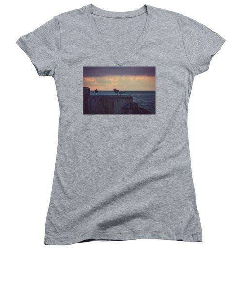 Birds Women's V-Neck T-Shirt (Junior Cut) by Scott Meyer