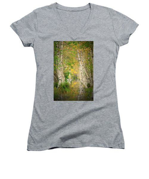 Women's V-Neck T-Shirt (Junior Cut) featuring the photograph Birtch Row  by Emmanuel Panagiotakis