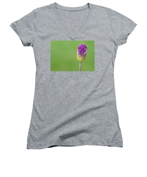 Women's V-Neck T-Shirt (Junior Cut) featuring the photograph Birthing Springtime by Linda Mishler