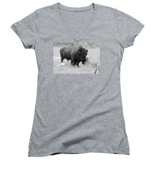 Bison And Buffalo Women's V-Neck T-Shirt (Junior Cut) by Mary Mikawoz