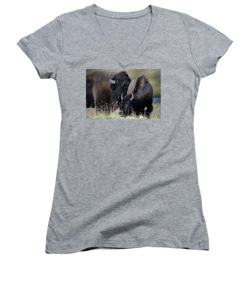 Bison Grasses Women's V-Neck T-Shirt