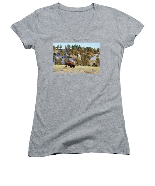 Bison In Custer State Park Women's V-Neck (Athletic Fit)