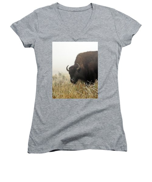 Bison In The Frosty Morning Women's V-Neck