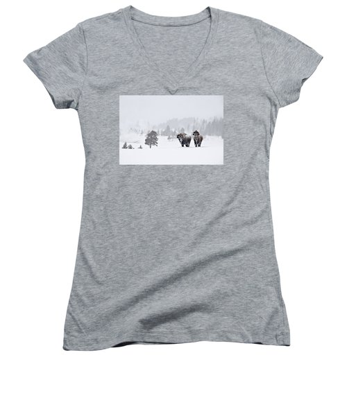 Bison In The Snow Women's V-Neck