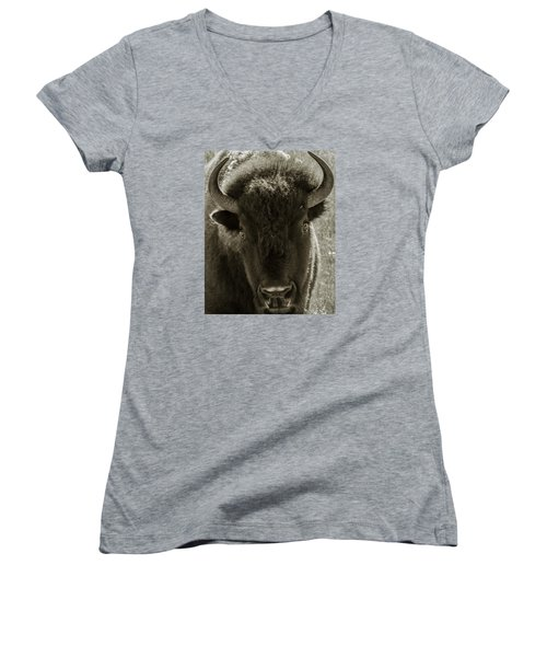 Bison Surprise Women's V-Neck T-Shirt (Junior Cut) by Elizabeth Eldridge