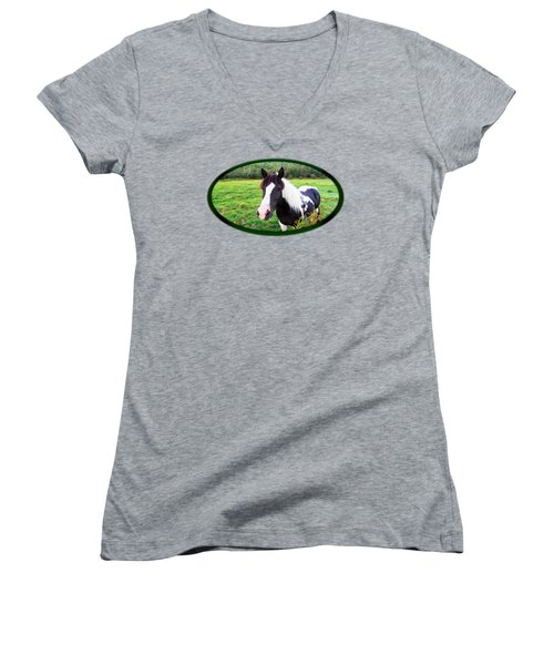 Black And White Horse-natural Setting Women's V-Neck (Athletic Fit)